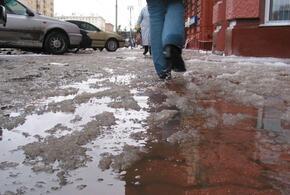 В Краснодарском крае температура поднимется до +10 градусов