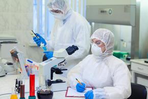 В Краснодарском крае зафиксировано 170 новых случаев COVID-19