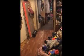 В Новороссийске многодетная семья превратила свою квартиру в свалку