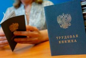 В России появятся новые трудовые книжки