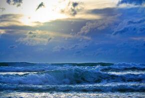 В Сочи во время шторма женщину с собакой смыло в море