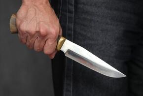 Житель Армавира проведет девять лет в тюрьме за убийство