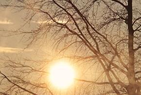Жителям Кубани пообещали аномальное тепло