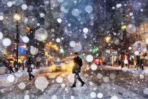 Зима не спешит покидать Краснодарский край