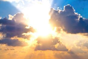 8 марта в Краснодаре ожидается теплая и сухая погода