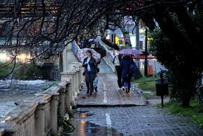 Дождливо и ветрено будет сегодня в Краснодарском крае