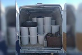 Две тонны меда не попадут на столы жителей Кубани к Масленице