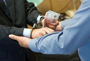 Начальник энергоснабжающей компании задержан за коммерческий подкуп