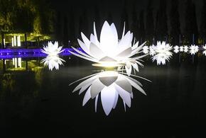 Парк «Краснодар» сменил зимний облик