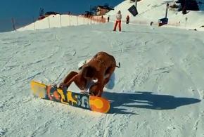 В горах Сочи девушка в бикини упала с плеч сноубордиста (ВИДЕО)