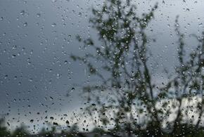 В Краснодаре ожидается дождливая погода