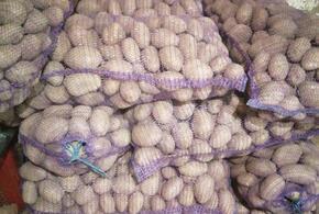 В Краснодарском крае будут судить «картофельного вора»
