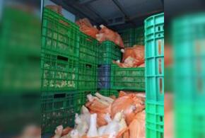 В Краснодарском крае сожгли больше тонны мяса