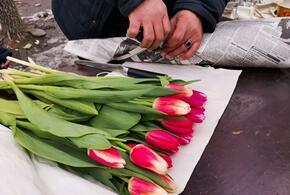 В Краснодарском крае в преддверии 8 марта работают почти 60 цветочных ярмарок