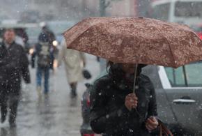 В первый день весны на Кубани будет дождливо