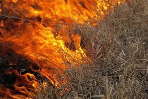 В станице под Краснодаром горела сухая трава