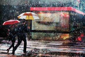 Жителям Кубани обещают дожди и порывистый ветер