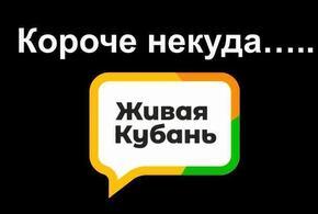 Короче некуда: итоги дня от «Живой Кубани» за 9 апреля