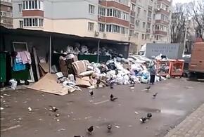В Краснодаре местные жители жалуются на горы мусора ВИДЕО
