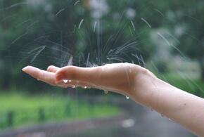 В Краснодарском крае последний день недели будет дождливым