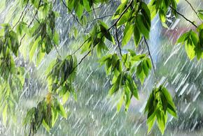 В Краснодарском крае сегодня пройдут кратковременные дожди