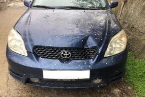 В Сочи задержали водителя, сбившего ребенка на пешеходном переходе