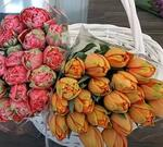 Советы краснодарского флориста: какие цветы выбрать на 8 Марта